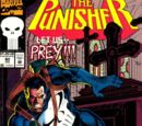 Punisher Vol 2 80/Images