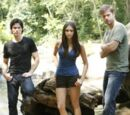 Damon, Elena, and Alaric