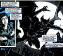 Bruce Wayne (Curse of the Cat-Woman)
