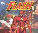 Flash: The Secret of Barry Allen Vol 1 1