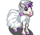 Bride Unicorn Foal