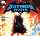 Batman and Robin Vol 1 14