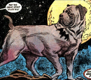 Ace the Bat-Hound (New Earth)