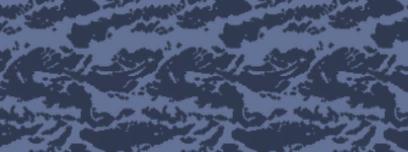 File:Weapon camo menu blue tiger.png