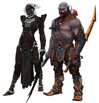 Qunari female and male