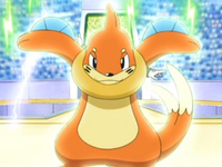 EP546_Buizel_de_Ash.png