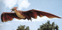 Fire rodan mp