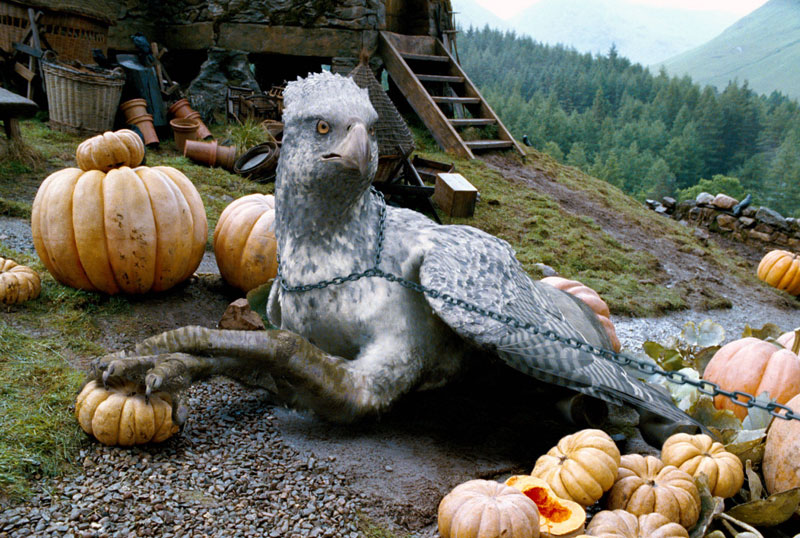 Harry Potter - Hippogriff 1