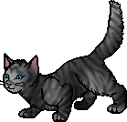 20120414233922!Feathertail.apprentice.png