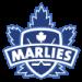 Marlies.png